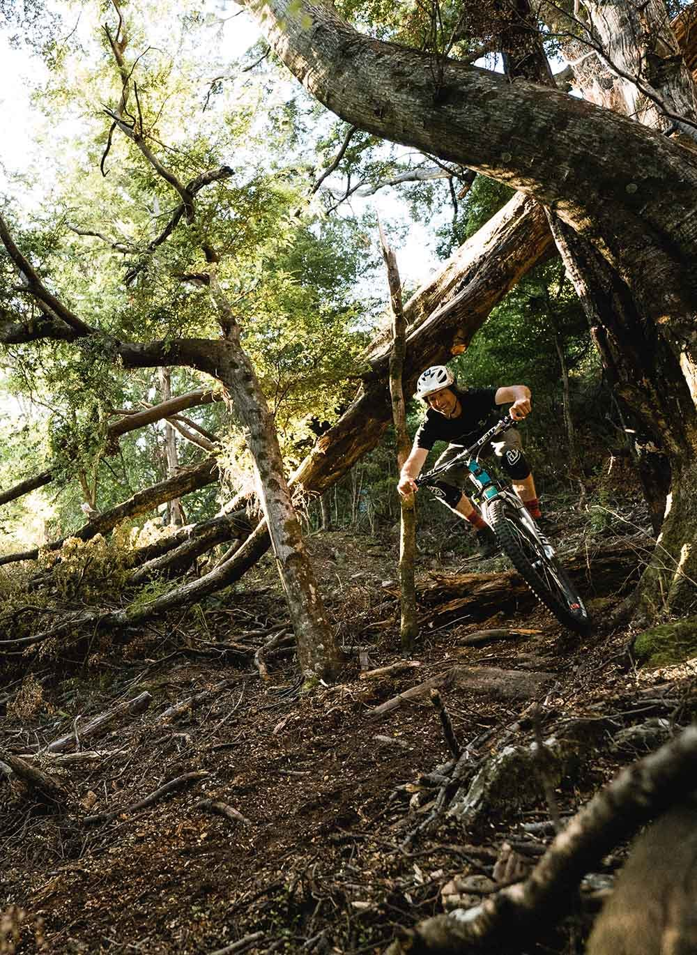 Tom Hey riding his mountain bike on forest trails