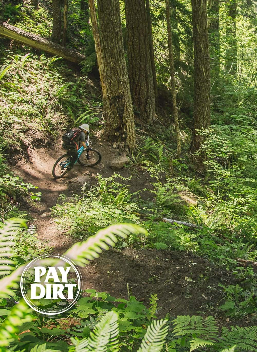 Trail worker riding singletrack in the forest
