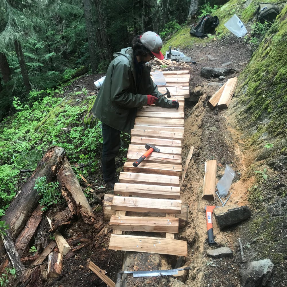 Whistler Off Road Cycling Association (WORCA) building a wood bridge in British Columbia