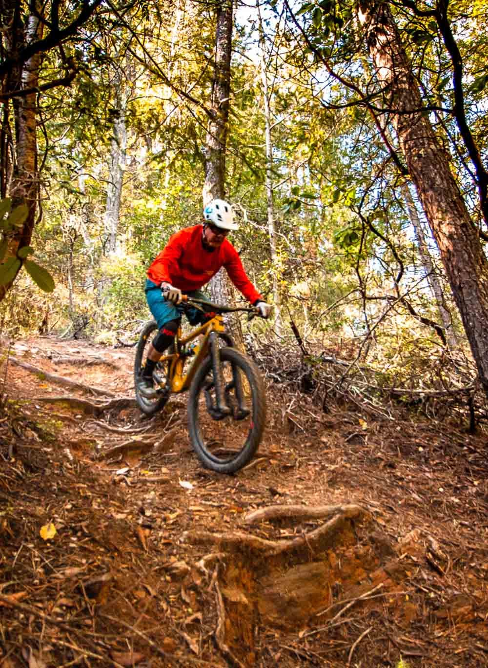 Bobby McMullen descending roots on his mountain bike
