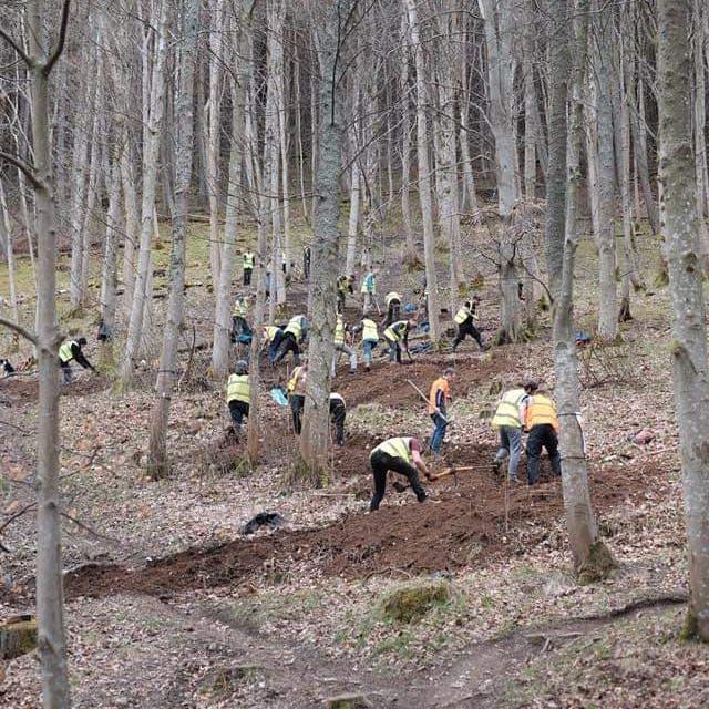 Tweed Valley Trail Association (TVTA): Trail work in Scotland