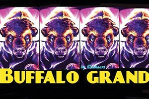 <h4>Buffalo Grand</h4>