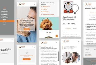 Assisi Mobile App Design Rending Image
