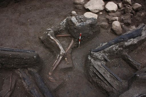 Skeletal remains of a victim discovered during an excavation in 2009