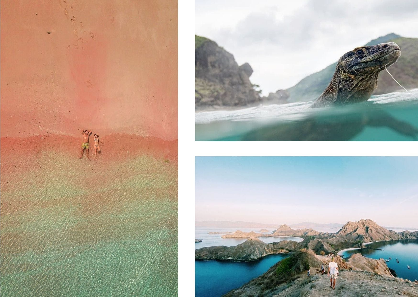 On 99% of island-hopping itineraries: Pink Beach (left), Komodo Dragons (top right), and Padar Island (bottom right)