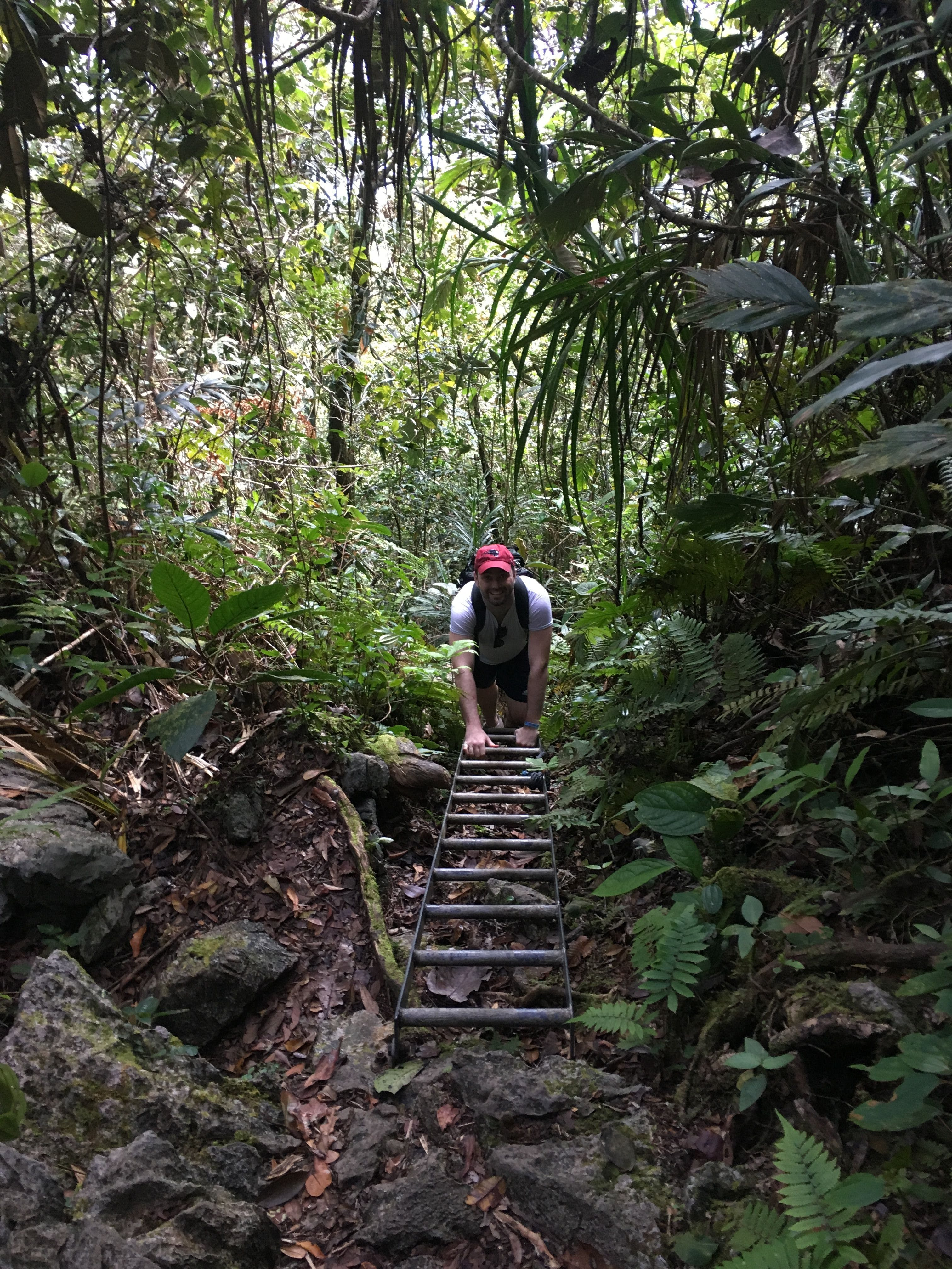 The Mulu climb is filled with steep ascents