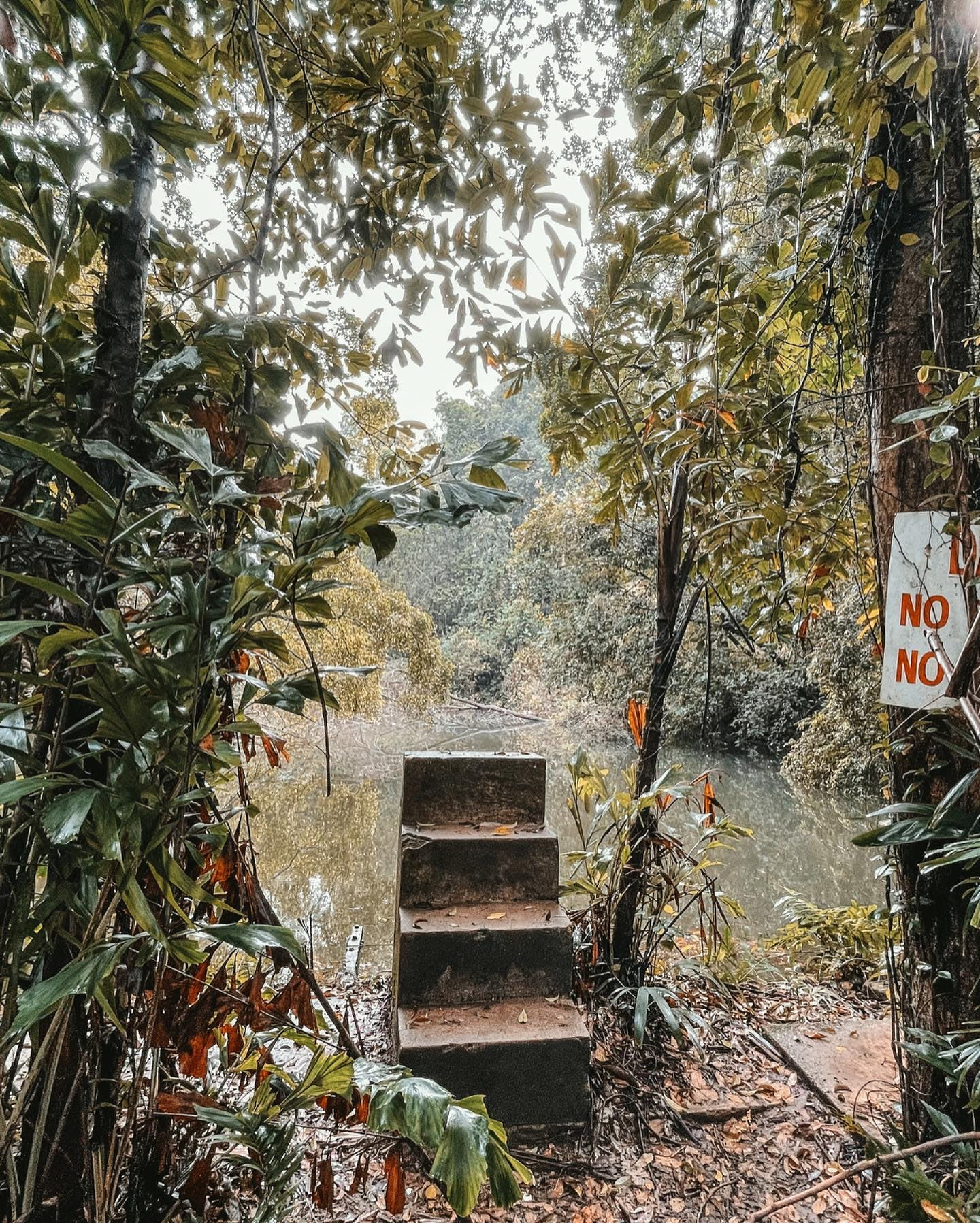 Hidden Hiking Trails & Nature Activities in Singapore You Haven't Heard Of