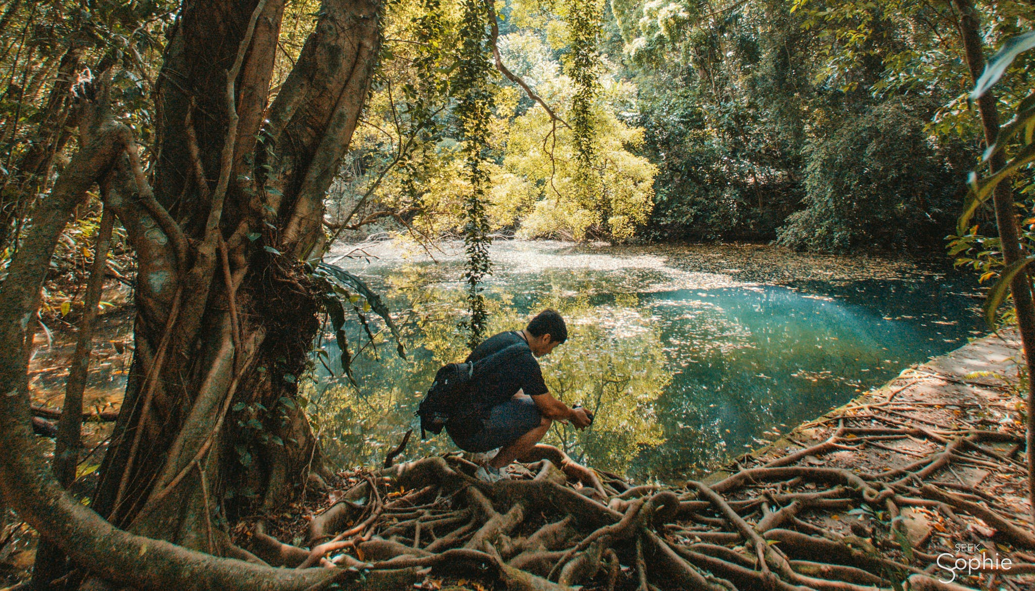 10 Off-Grid Experiences in Singapore for Nature Lovers