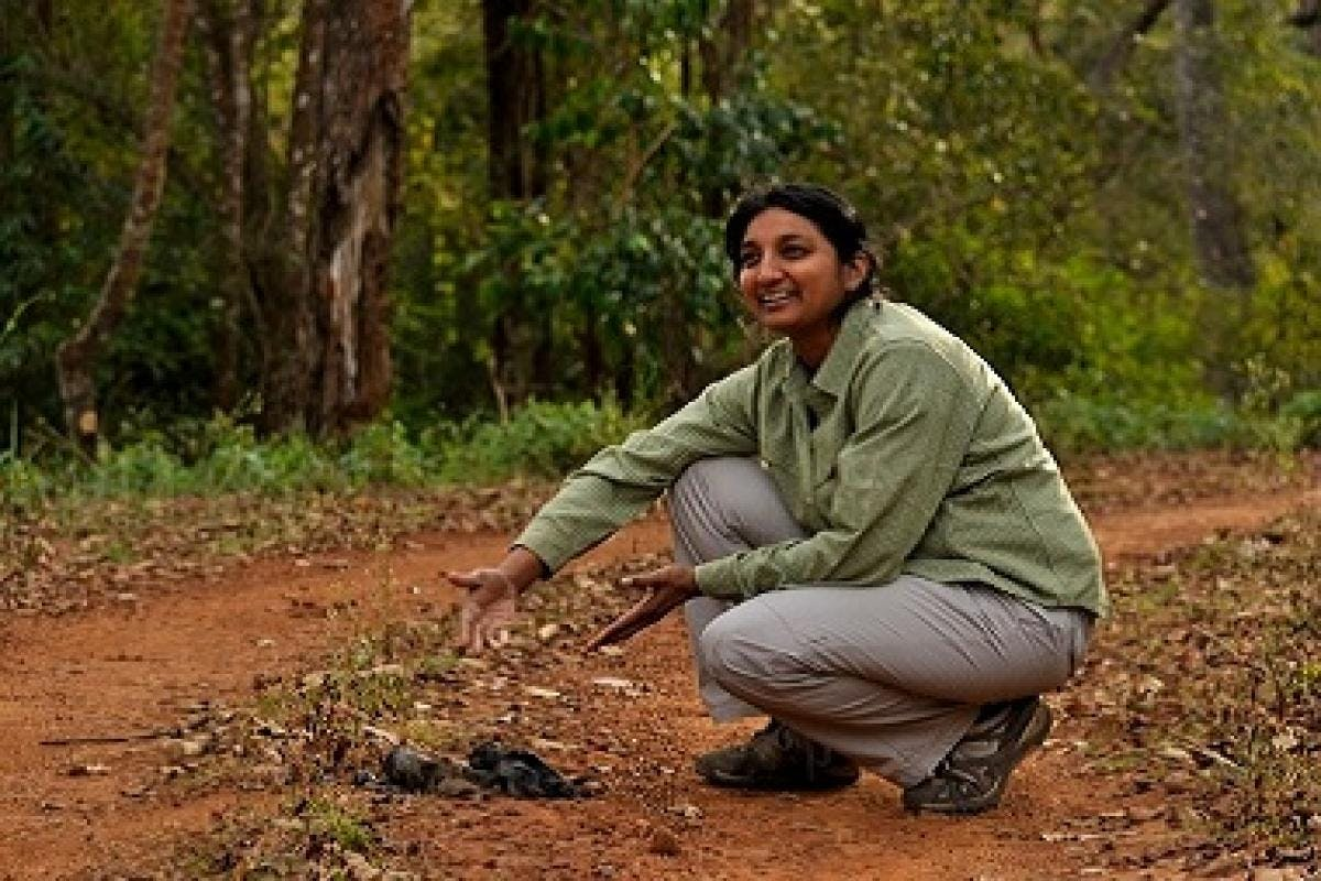 Uma Ramakrishnan for SEEMA talks about tiger conservation with genetic clues