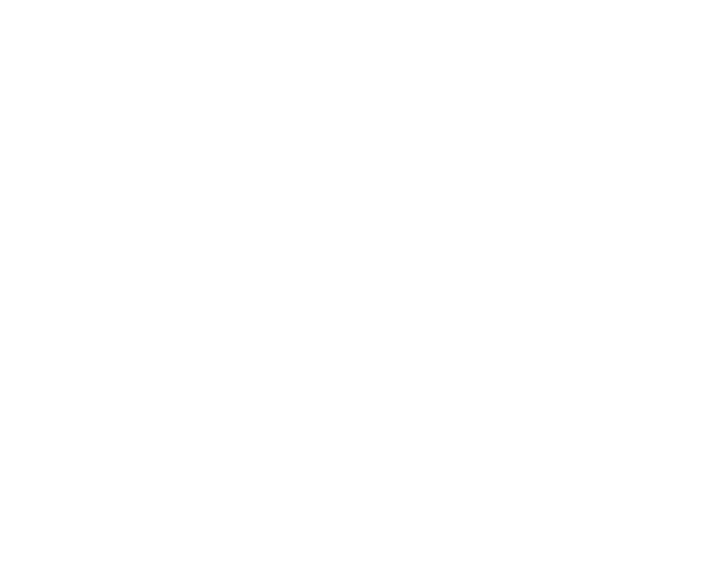 Statement Effects | Seidensticker Onlineshop