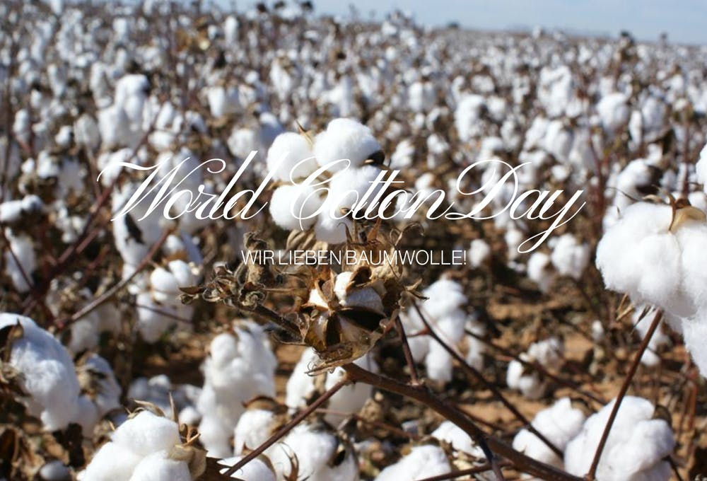 World Cotton Day | Seidensticker