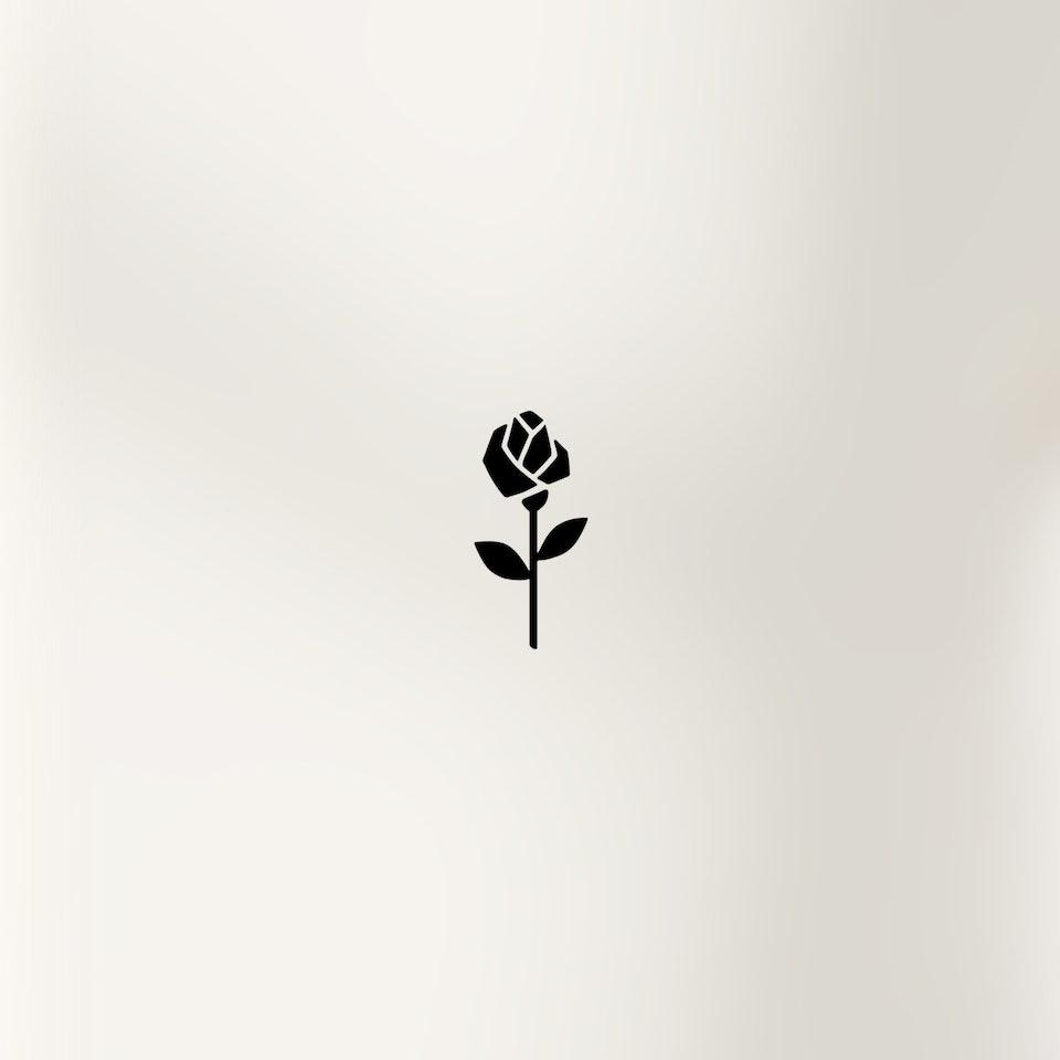 Schwarze Rose | Seidensticker Onlineshop