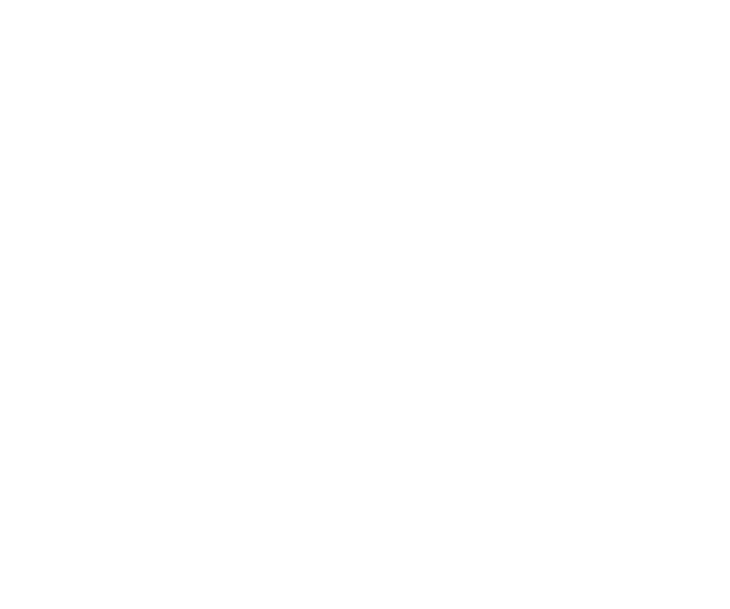 Fall Essentials | Seidensticker