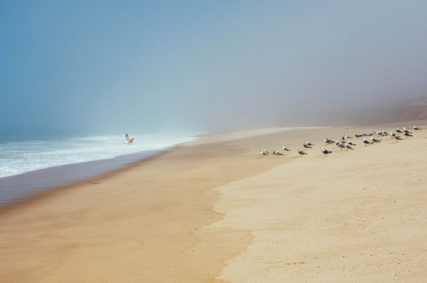 Beautiful, long and empty white sand beach along the Portuguese coast.