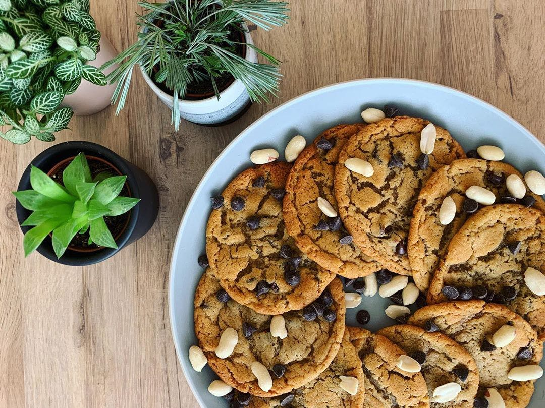 A plate of cookies surrounded by plants