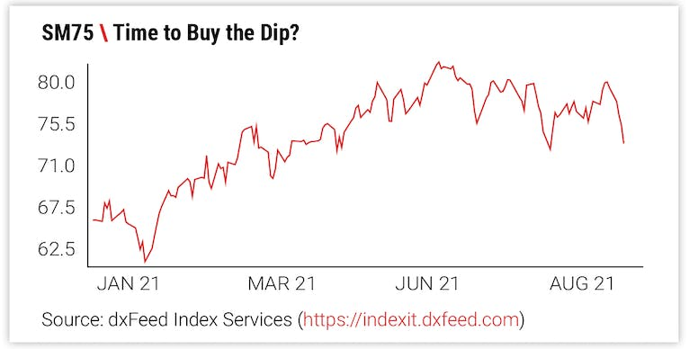 Time to Buy the Dip?