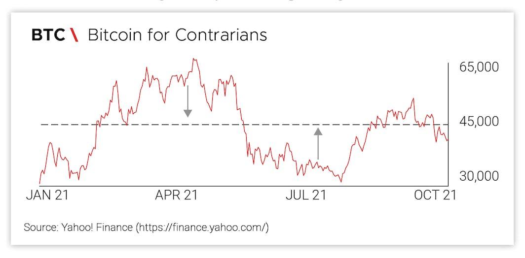 Bitcoin for Contrarians