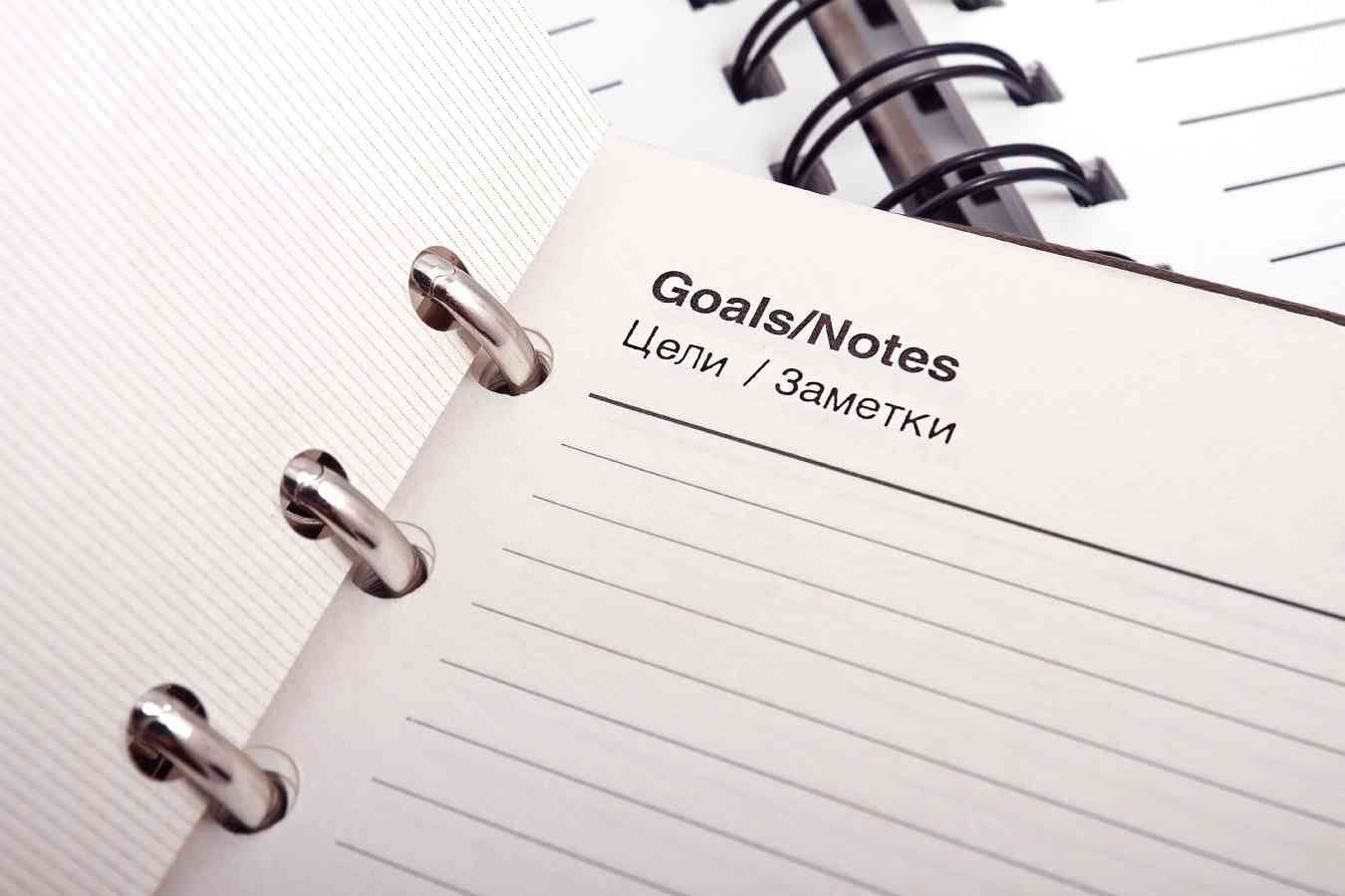 project plans and goals