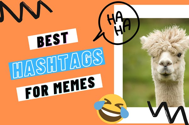 Best Meme Hashtags For Followers Growth Updated 2020