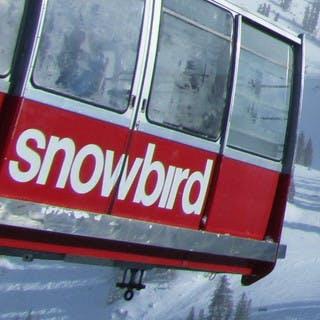 Snowbird packages