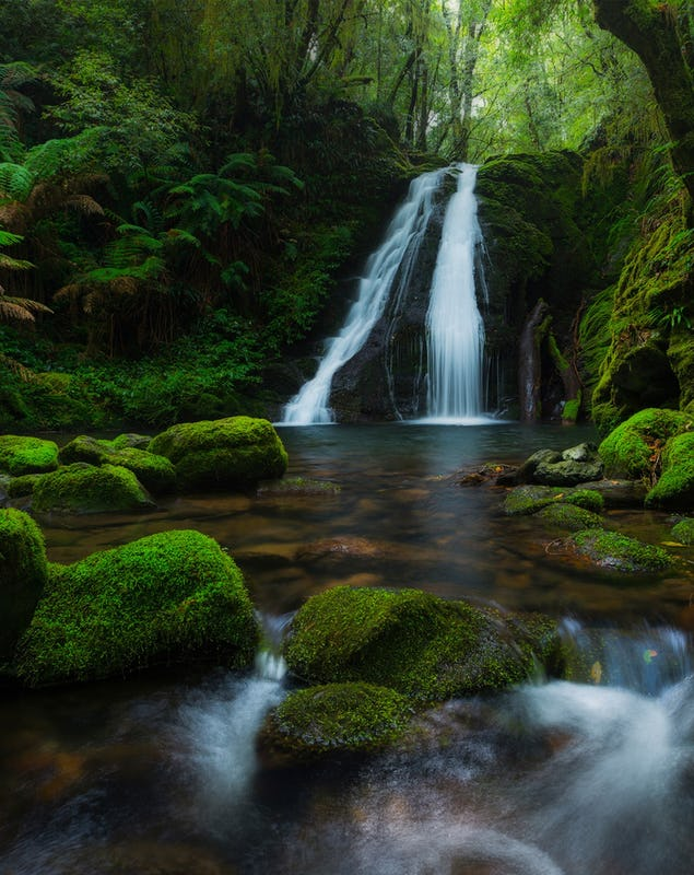 Cascade Falls waterfall flowing in New England National Park