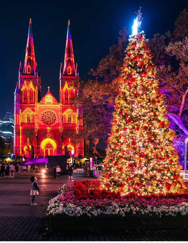 Christmas Tree and light projection on St Mary's Cathedral