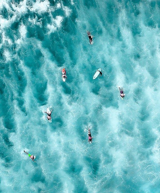 Aerial overlooking surfers catching waves at Bronte Beach, Bronte.