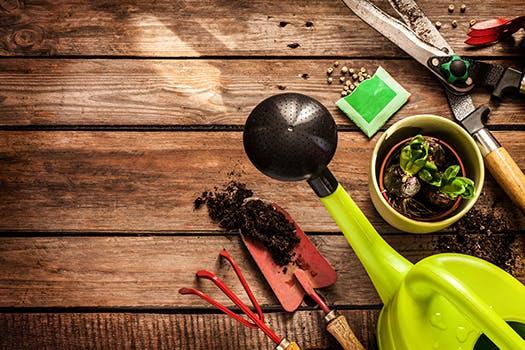 Maak je tuin klaar voor de herfst