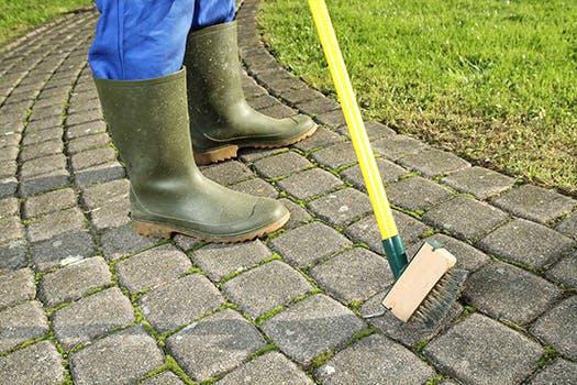 Tuin klaar voor de herfst - ontmos je gazon