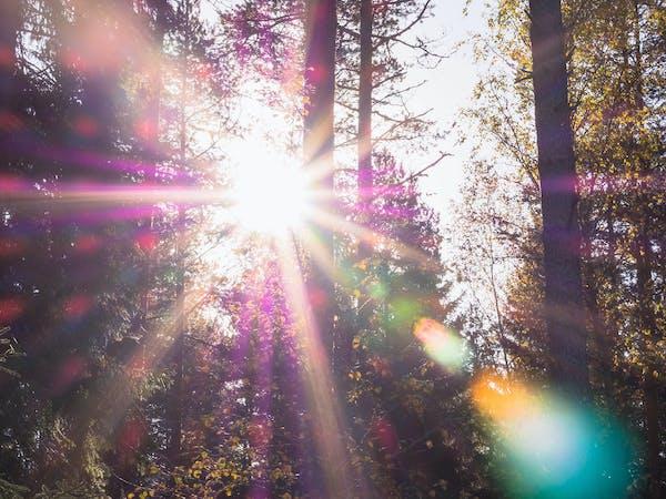 Aurinkoinen päivä