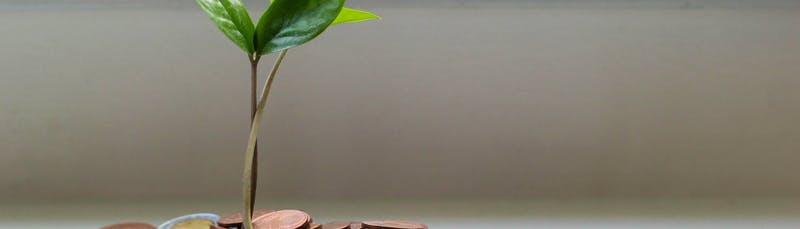 passive income savings account