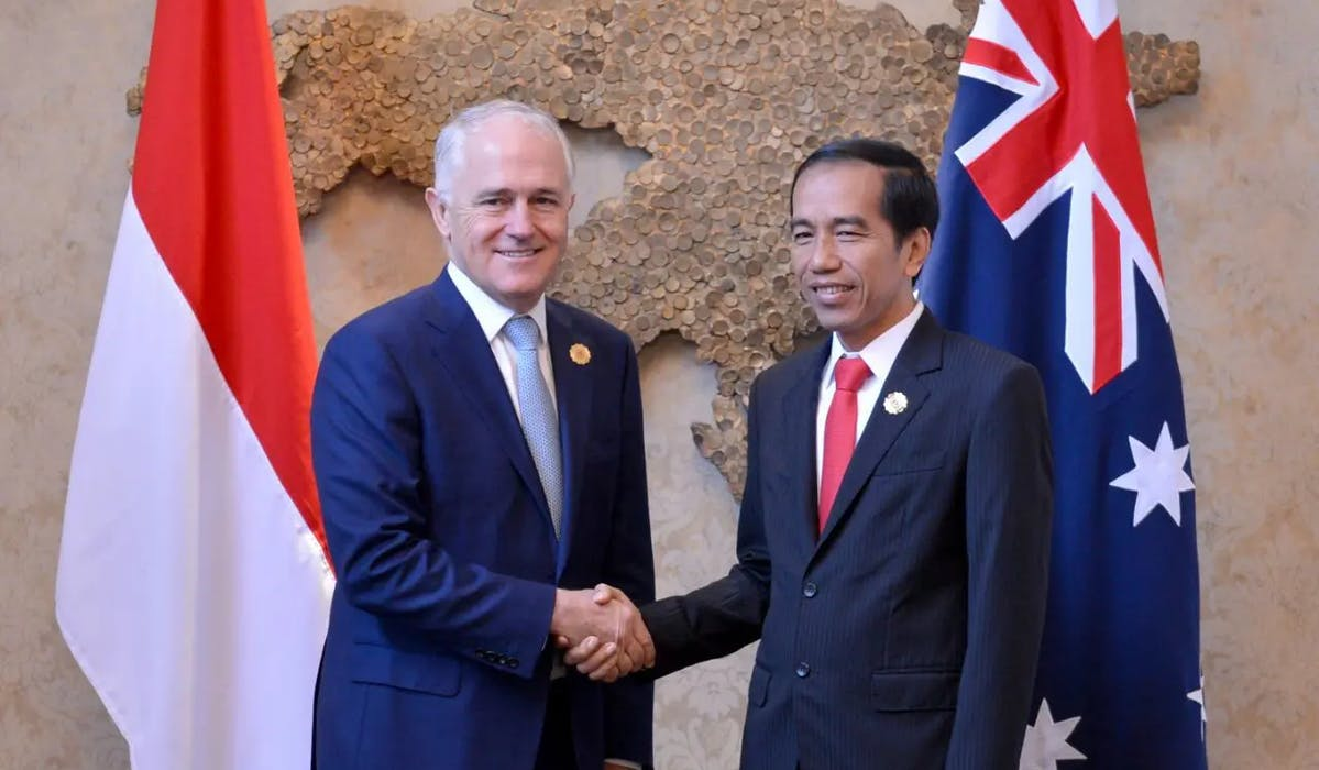 The deal can be regarded as a strategic partnership, considering that the agreement will be beneficial to both countries. Basically, Australian goods or products such as live cattle, grains, beef, steel, and dairy will benefit from the agreement because of the lowering of tariffs.