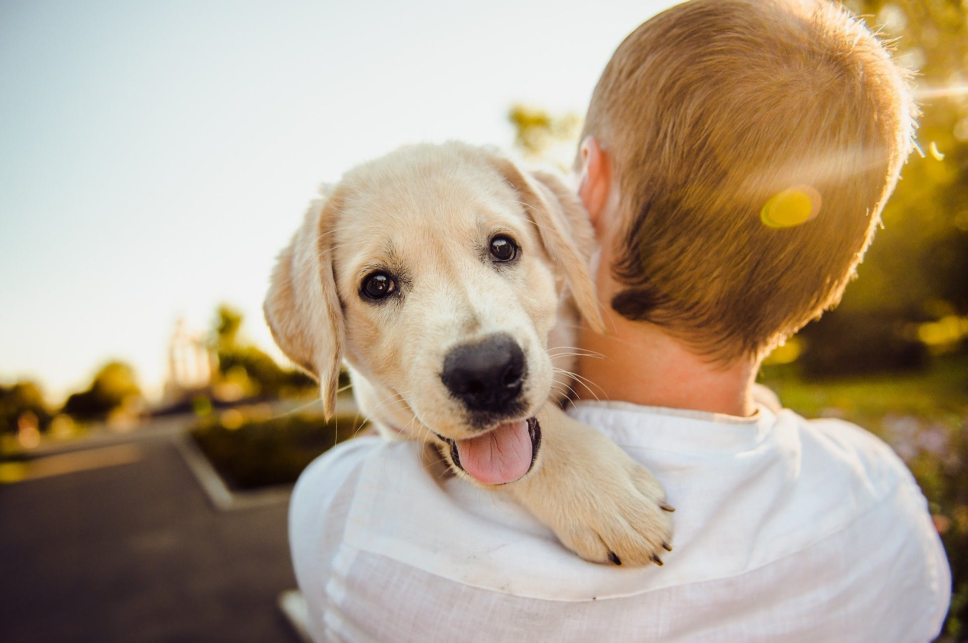 Boy carrying his dog