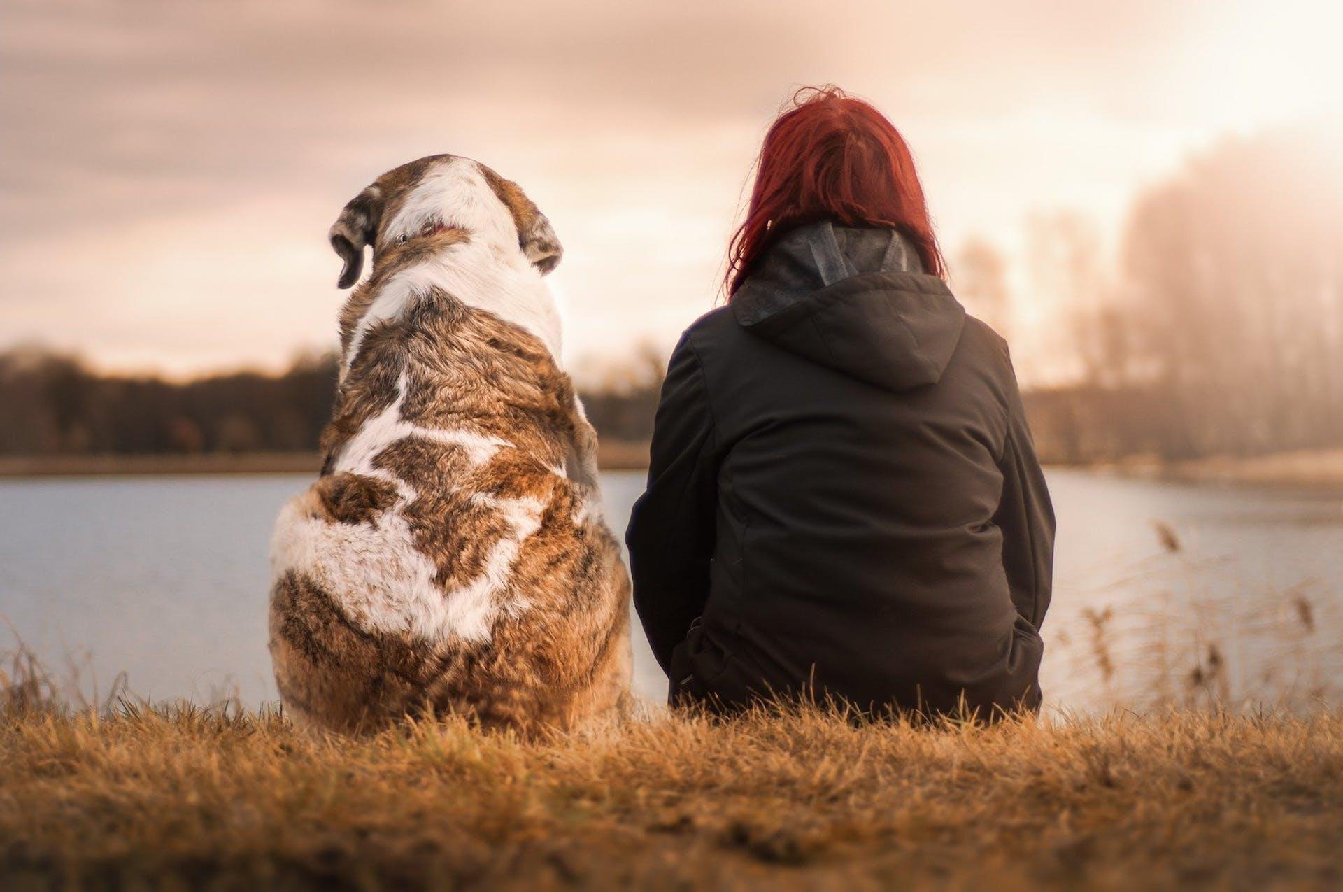 A woman and a dog sitting near a lake