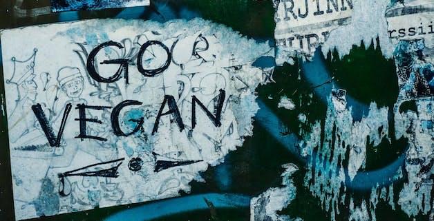 Rebellion einer grünen Jugend: Ist Veganismus der neue Punk?