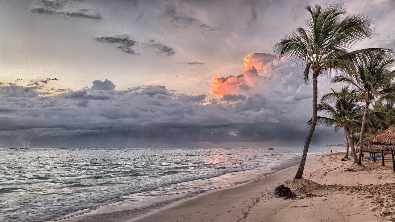 Traumstrand mit Palmen