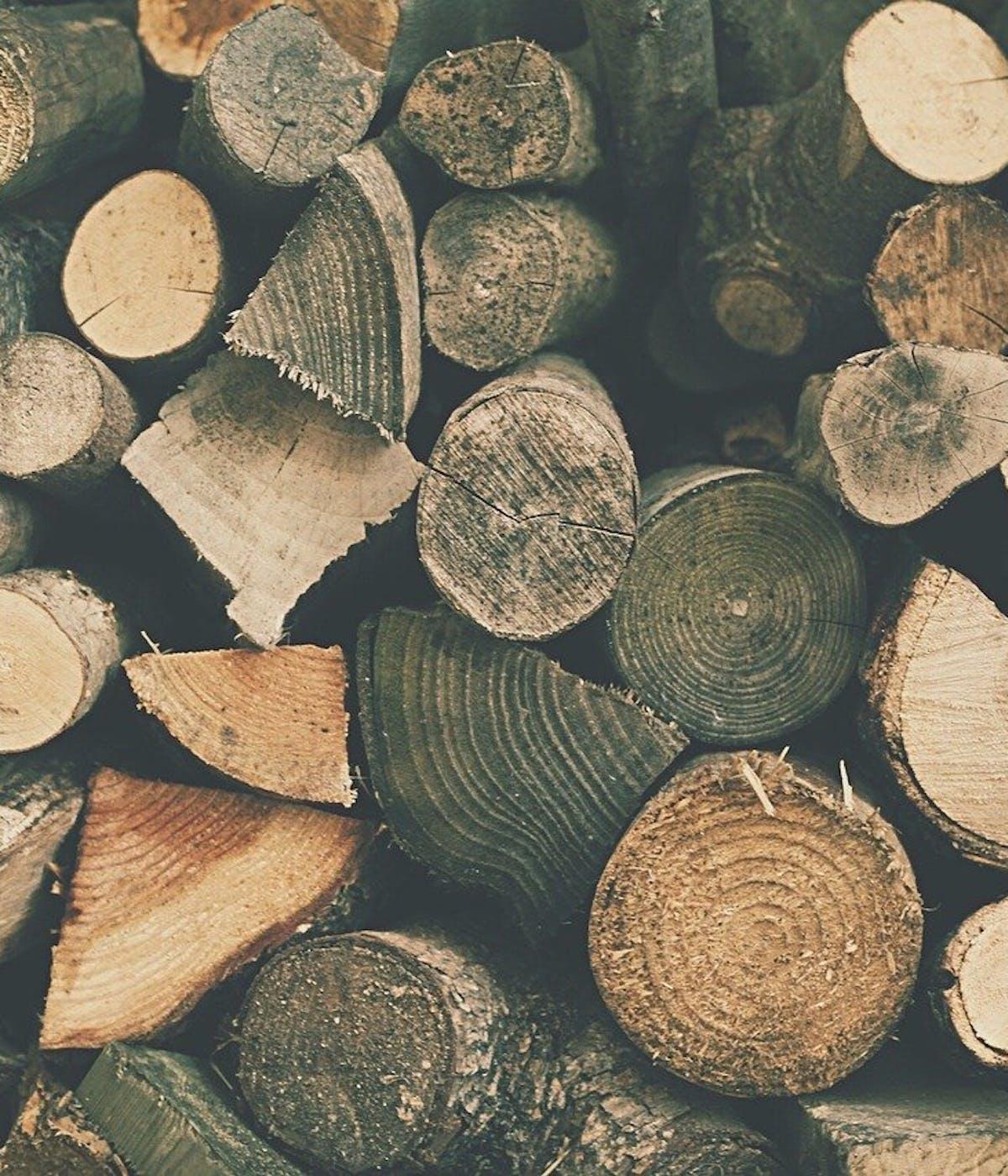 Holz aus nachhaltiger Rodung
