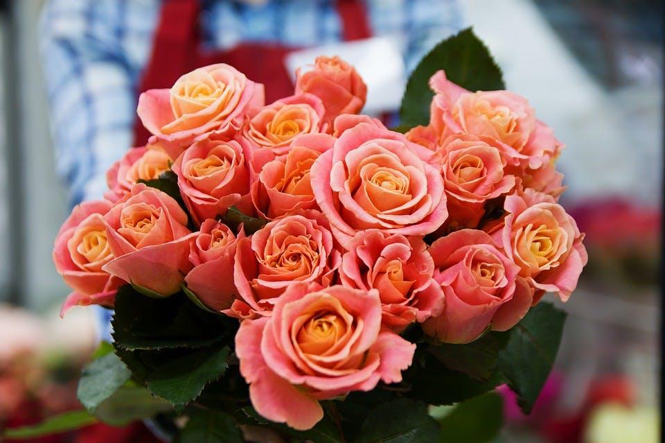 Ein Strauß rosa Rosen