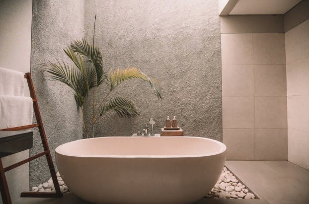 Spa interior  - an oval sink and a plant in the background