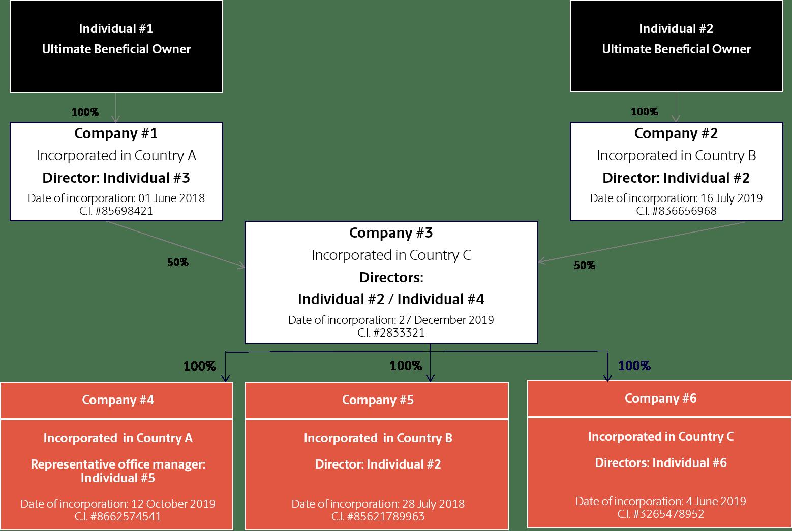 example Organizational Chart Statrys