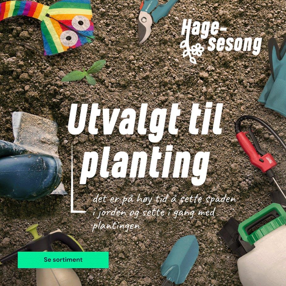 https://www.staypro.no/hage-utvalgt-planting
