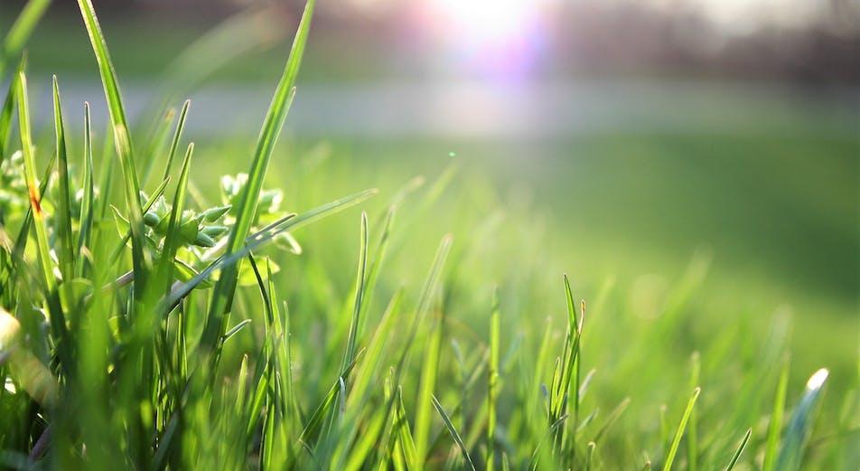 Guider: Slik tar du vare på gressplenen – få grønnere gress på din side