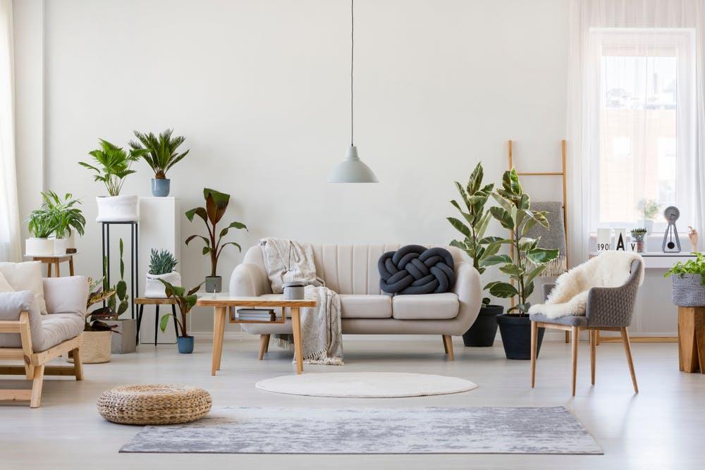 Amenajarea livingului: cum alegi canapeaua potrivită la tine acasă