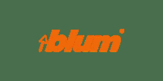 Blum - Fitting Solutions