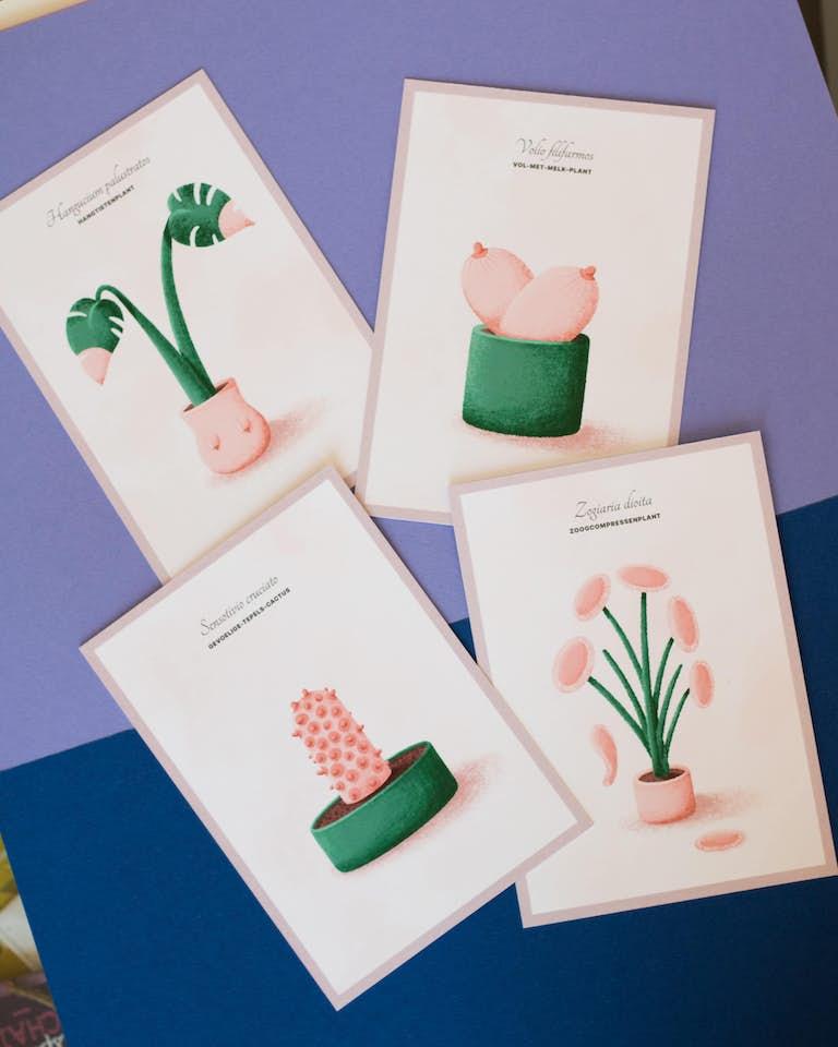 foto van 4 tietenplantkaarten