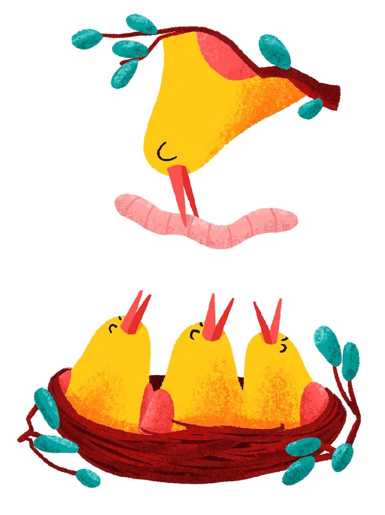 geboorte afbeelding luckybird