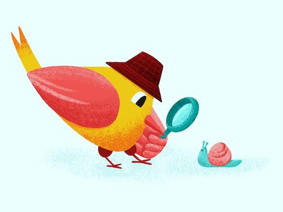 uitgelichte afbeelding lucky bird