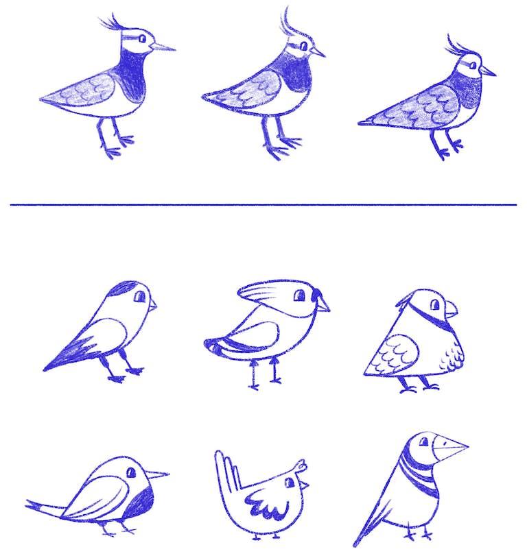 schetsen lucky bird mascotte