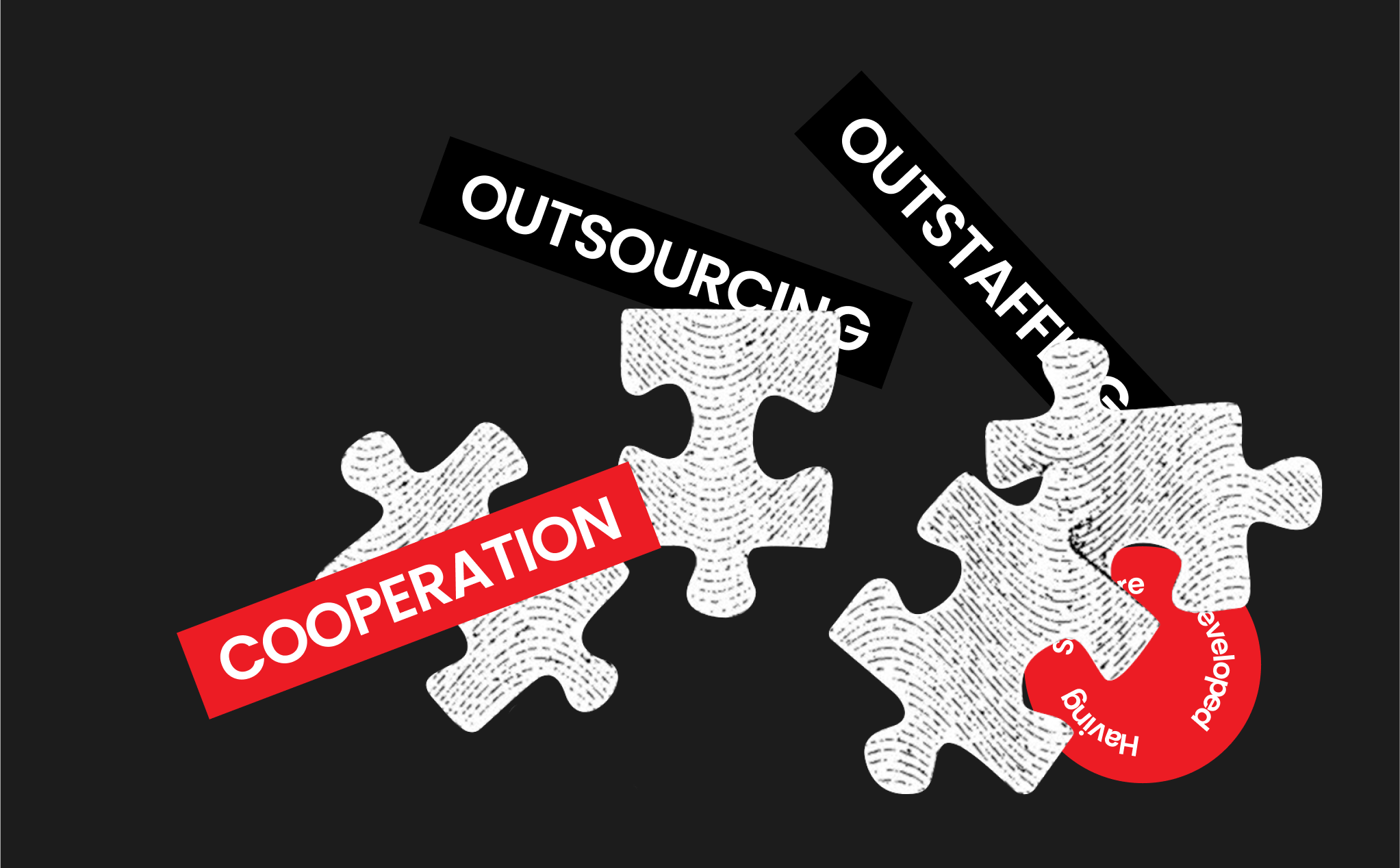 Cooperation Models with Software Companies.