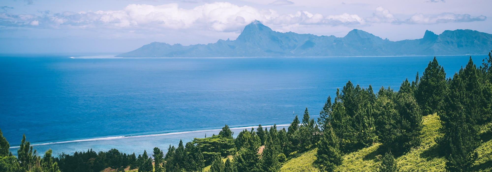 Vacker natur på Papeete med skog, hav och berg i horisonten.